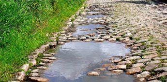 Parijs-Roubaix: de dood of de gladiolen