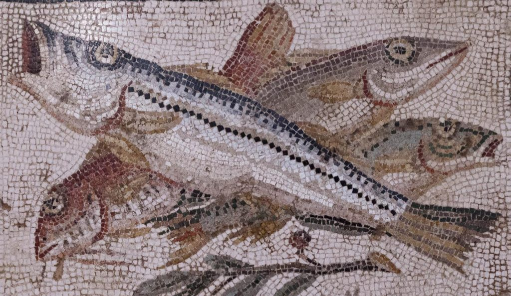 Mozaiek met vis - Nationaal Archeologisch Museum Napels