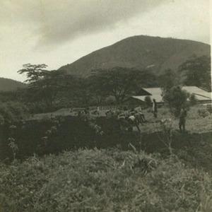 De koffieplantage 'du Haut-Bamoun' nabij Foumban, bron: fotoboek Jan van Bommel