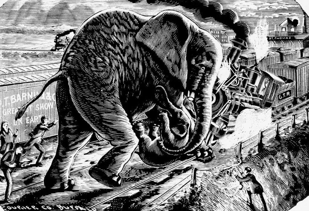 "Jumbo ""redt"" de kleine olifant Tom Thumb, illustratie uit 1885. Bron: Wikimedia"