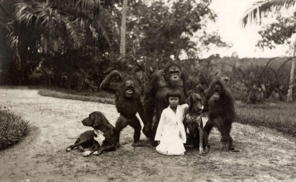 Meisje in Nederlands-Indië met aap. Ca.1930. Foto: Het Leven / Koninklijke Bibliotheek