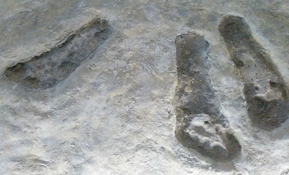 Prehistorische voetafdrukken, gevonden op Schokland (Historiek)