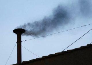 Zwarte rook