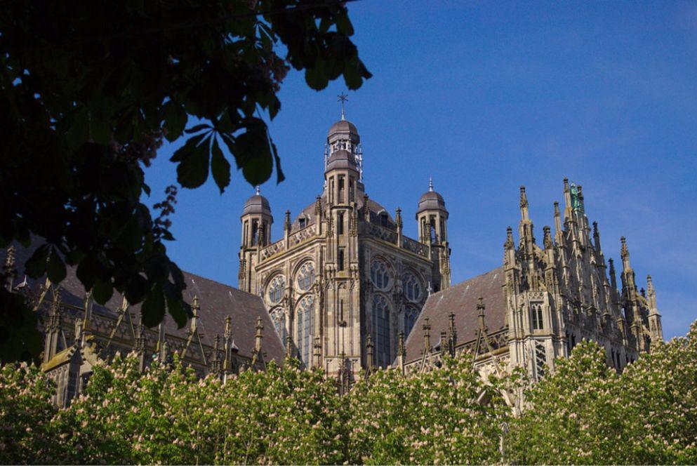 Sint Janskathedraal in Den Bosch - cc