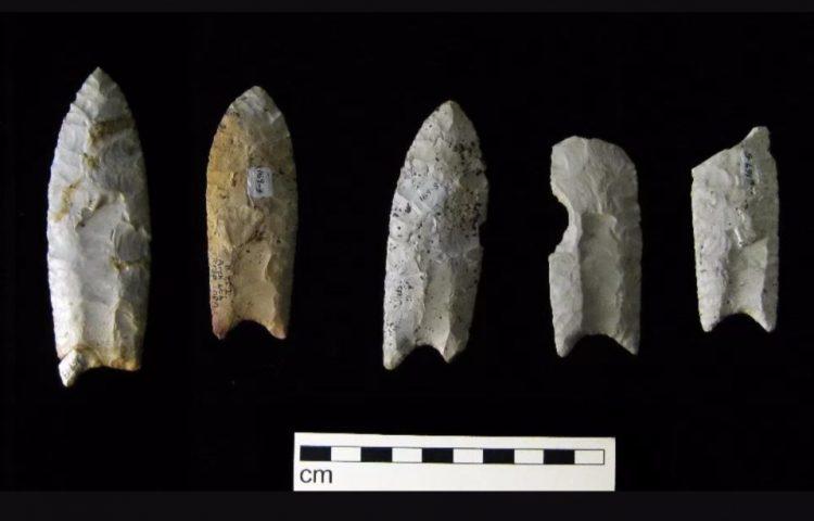 Enkele Clovis-voorwerpen (cc - Bill Whittaker)