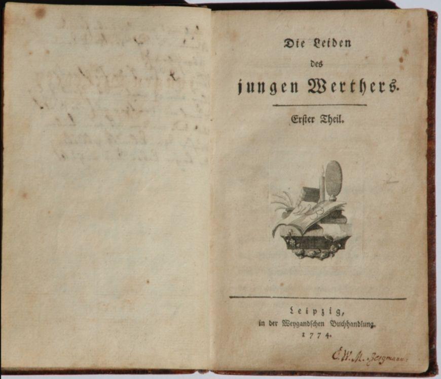 Die Leiden des jungen Werthers - Goethe