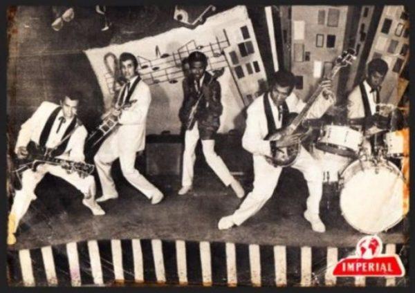 The Tielman Brothers en de oertijd van de Nederlandse popmuziek (detail boekcover)