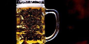 Wie dronk het eerste biertje? (15.000 jaar geleden)