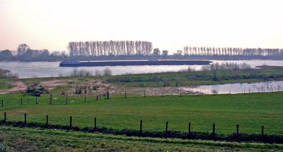 De Rijn bij Spijk - cc