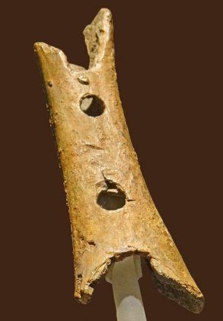 De fluit van Cerkno zoals te zien in het museum (cc)