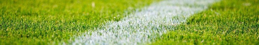 Voetbalgeschiedenis (cc - Pixabay - Stocksnap)