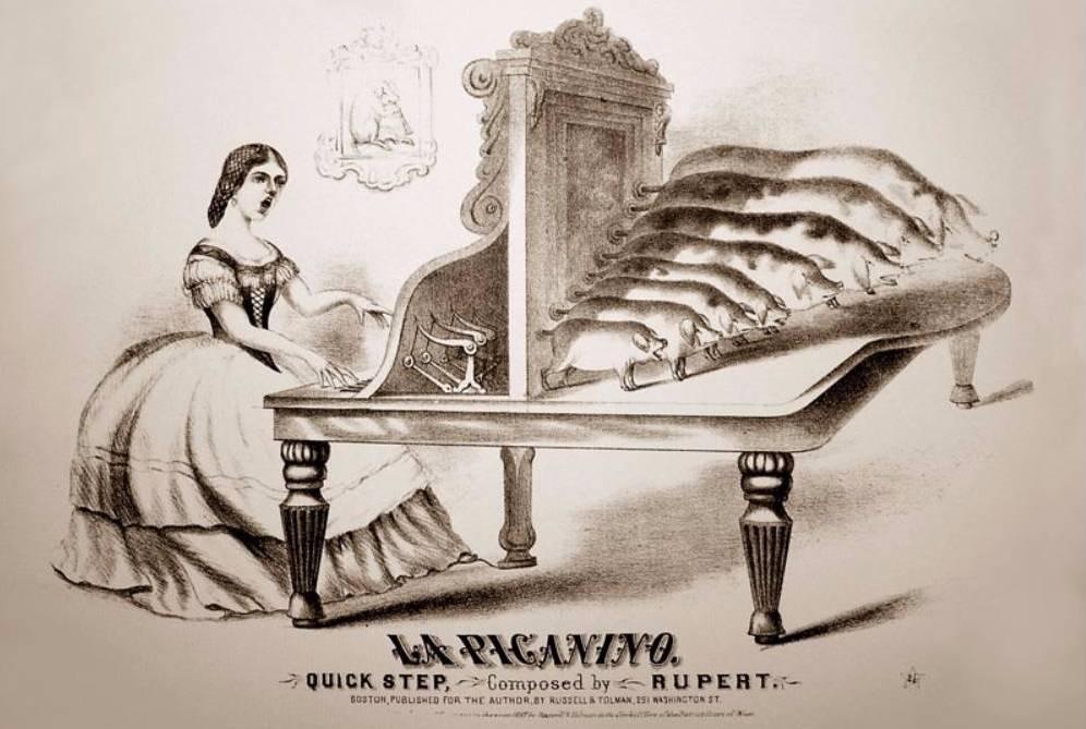 'La piganino' - Afbeelding van een varkensorgel