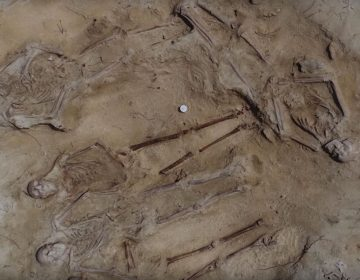 Lichamen van opvarenden van de Batavia (Still YouTube)