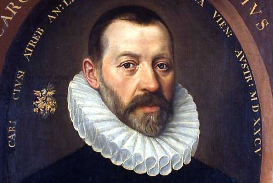 De Vlaamse arts en botanicus Carolus Clusius