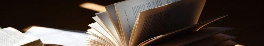 Geschiedenisboeken (cc - congerdesign - Pixabay)