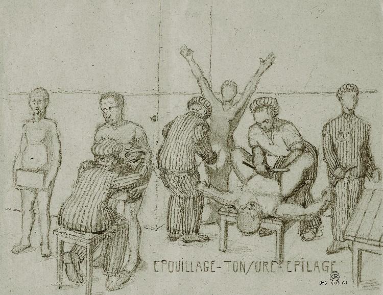 Een tekening van het scheren in Neuengamme. Bron: de laatste getuige