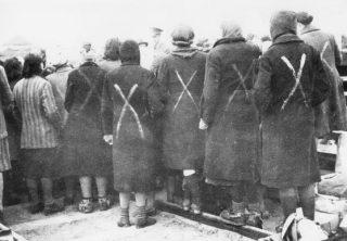 Vrouwelijke gevangenen in Ravensbrück met een wit kruis op de rug, geselecteerd voor vervoer naar Neuengamme (Rode Kruis Zweden)