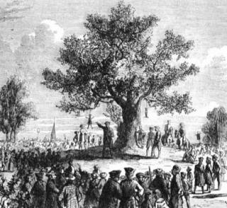 Liberty Tree in Boston - wiki