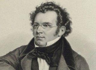 Franz Schubert (Publiek Domein - wiki)
