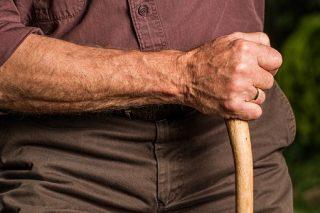 Man met stok (CC0 - Pixabay - stevepb)