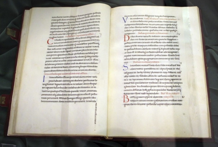 De agri cultura (XV sec., Biblioteca Medicea Laurenziana, pluteo 51.2) (CC BY 3.0 - Sailko - wiki)