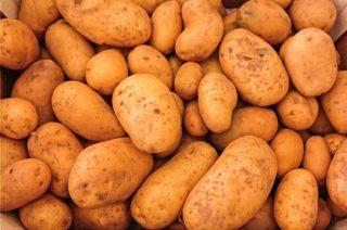 Aardappelen (CC0 - Pixabay - Wounds_and_Cracks)