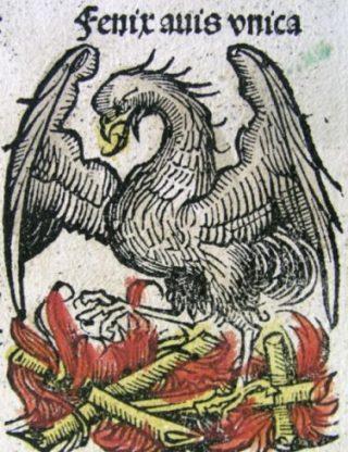 Afbeelding van de feniks die uit zijn as herrijst, in de Neurenberger Kroniek, Hartmann Schedel (1440-1514)