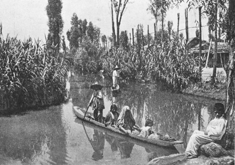 Chinampas in 1912.