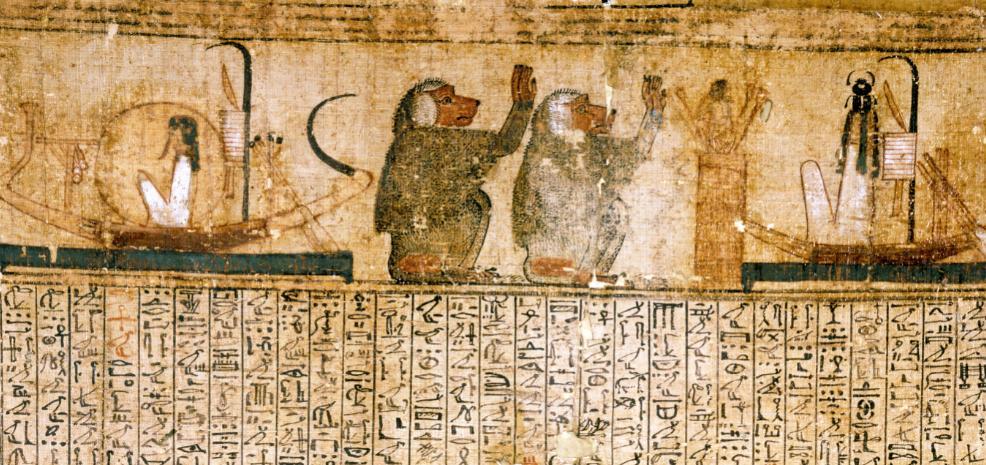 Fragment uit het Dodenboek op papyrus, van ca. 1325-1275 v. Chr. De zonneboten van de zonnegod Re (links) en van Cepri (rechts, bij zonsopkomst) worden aanbeden door bavianen; die dieren schreeuwen de zon tegemoet, alsof zij hem verwelkomen. Het dodenboek van een koopman, Kenna, is met 1770 meter het langste handschrift van de collectie en van een uitzonderlijke kwaliteit. (Foto RMO Leiden)
