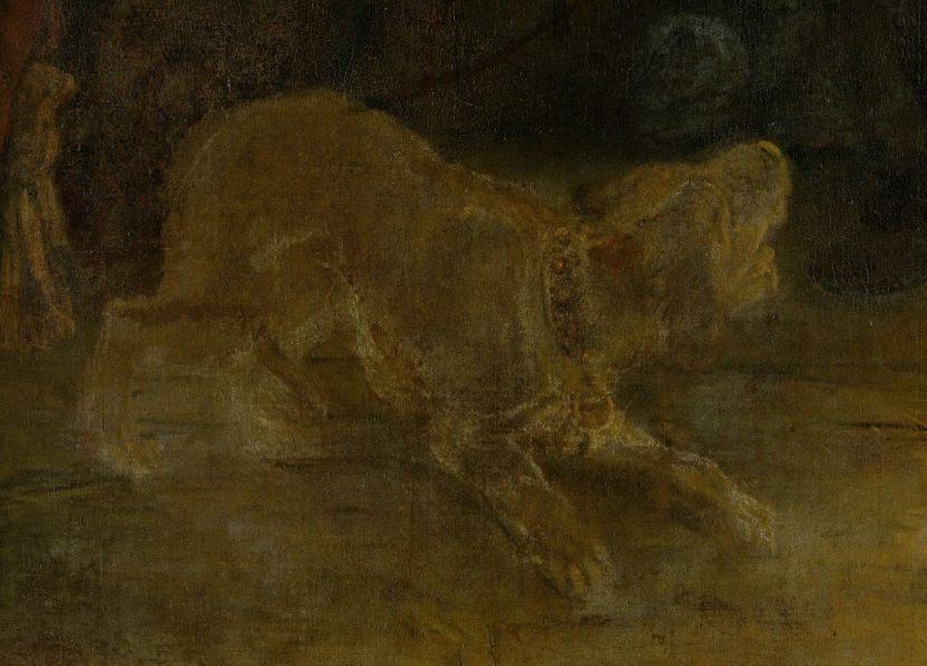 Hond op de Nachtwacht