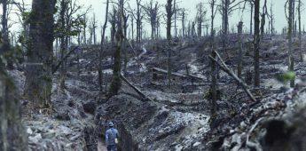 Ingekleurde foto's uit de Eerste Wereldoorlog