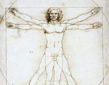 Homo universalis - Vitruviusman van Leonardo da Vinci