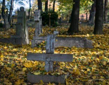 Oude begraafplaats (CC0 - Pixabay - summa)