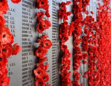 Eerste Wereldoorlog (CC0 - Pixabay)