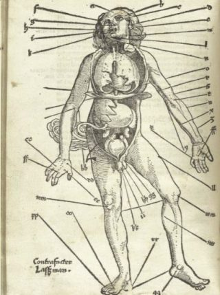 Aderlaatpunten in het Feldbuch der Wundarzney 1517, door Hans von Gersdorff, illustratie Hans Wechtlin (Publiek Domein - wiki)