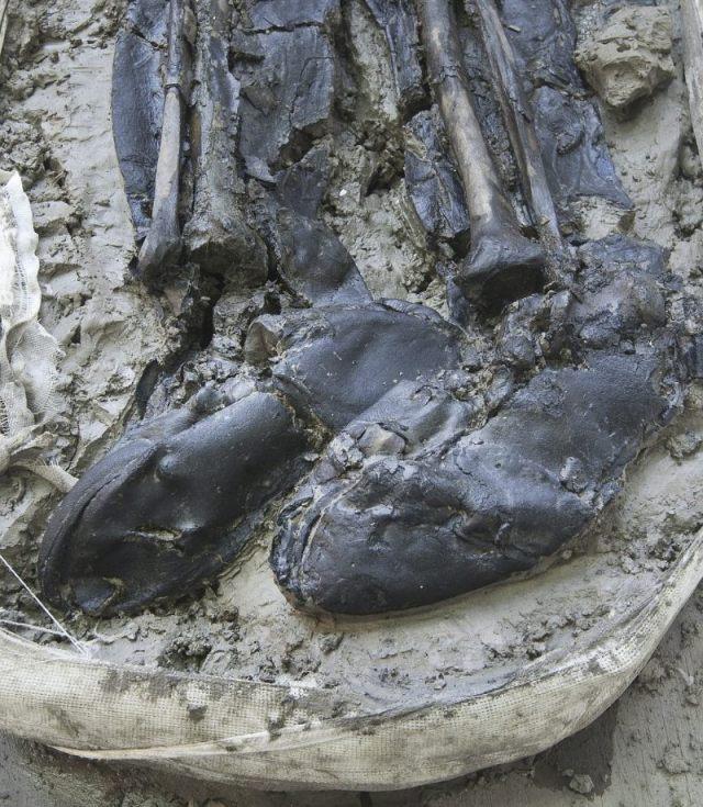 De laarzen van de man (MOLA)
