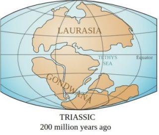 Laurazië en Gondwana (CC BY 3.0 - Lenny - wiki)