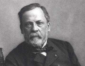 Louis Pasteur - Portret door Félix Nadar