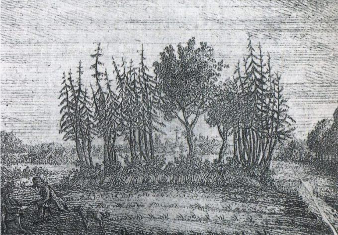 Oudst bekende afbeelding van de Upstaldboom door C.B. Meyer (1790) - Publiek Domein / wiki