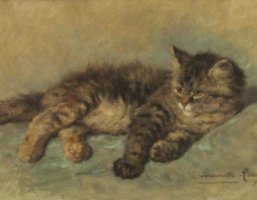 Katje, 1896 - Henriëtte Ronner-Knip (Publiek Domein - wiki)