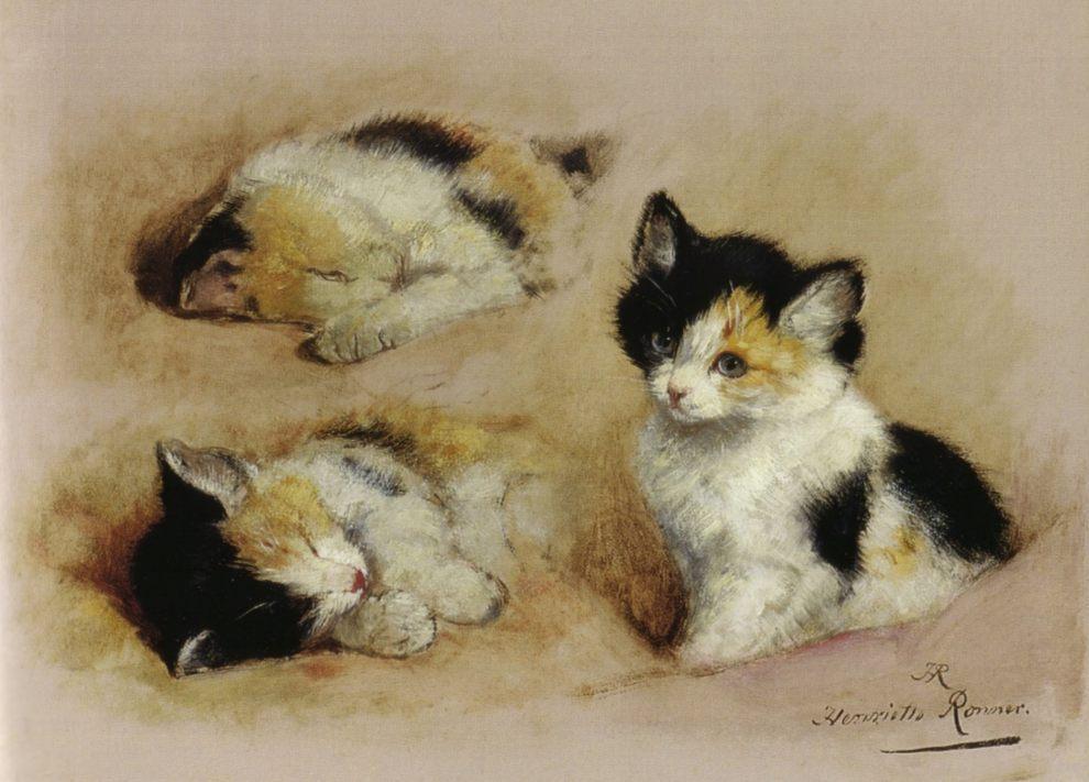 Henriëtte Ronner-Knip - Studies van ontwakend katje