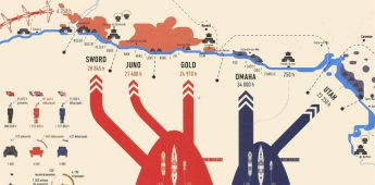 De SS in infographics