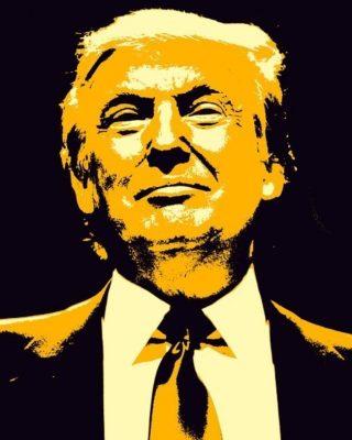 De Amerikaanse president Donald Trump wordt door velen beschouwd als een typische populist (cc0 - Pixabay - TheDigitalArtist)