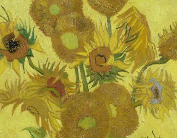 Vincent van Gogh, Zonnebloemen (detail), 1889, Van Gogh Museum, Amsterdam (Vincent van Gogh Stichting)