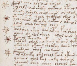 Tekst uit het Voynich-manuscript (Publiek Domein - wiki)