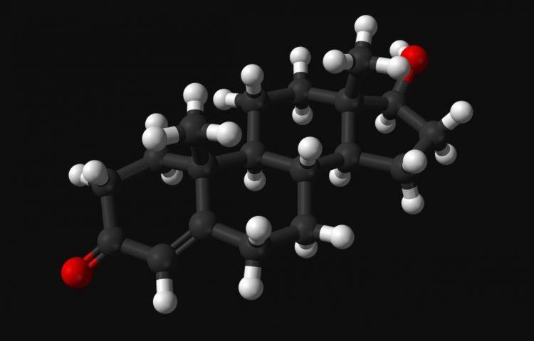 Molecuulmodel van testosteron (Wiki Commons)