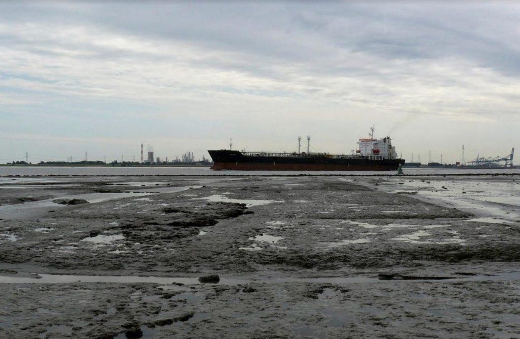 Het Verdronken Land van Saeftinghe, Oost Zeeuws-Vlaanderen (foto H.M.D. Dekker)