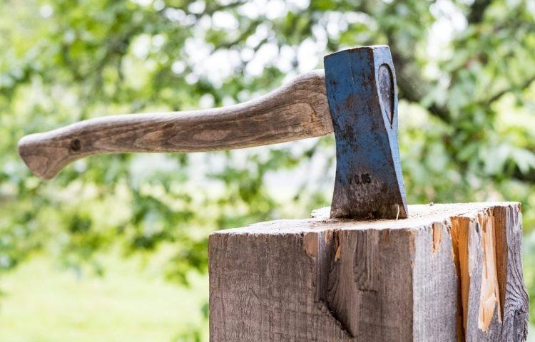 Het bijltje erbij neerleggen of neergooien (CC0 - Pixabay - medienluemmel)