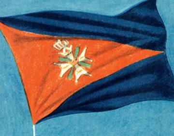Vlag van de Legerluchtmacht Nederland (Beeld: Kroniek van de Koninklijke Luchtmacht)