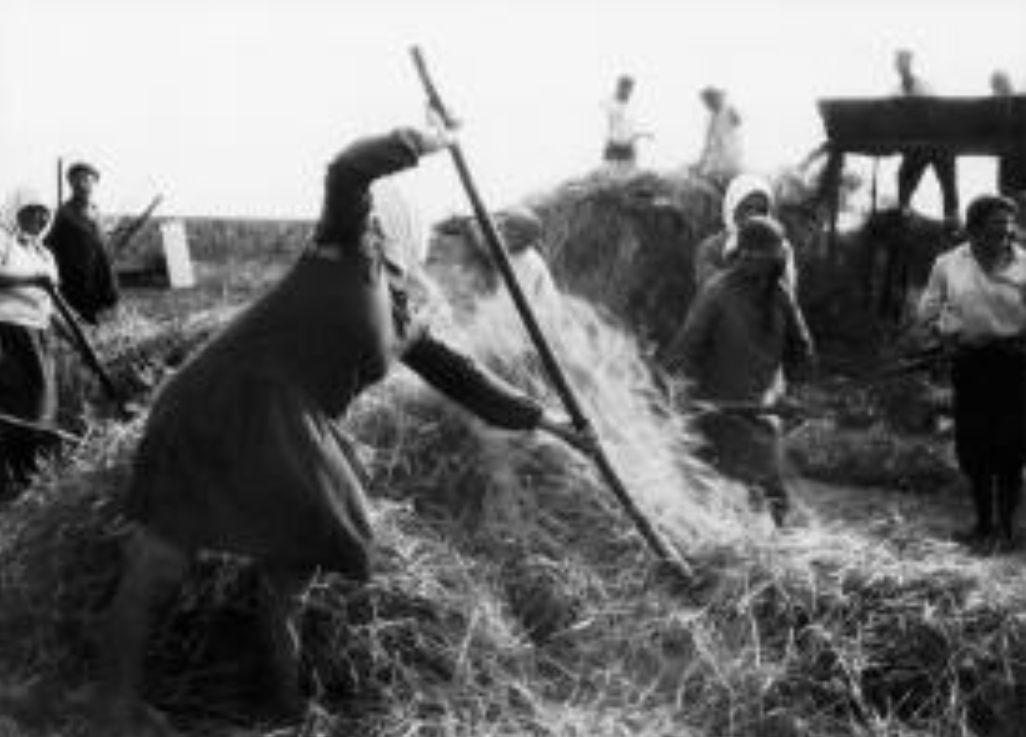 Oogst op een kolchoz, 1930 (Publiek Domein - wiki)